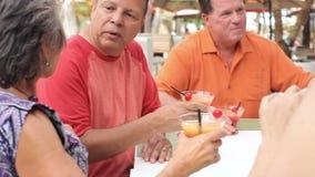 Groep Hogere Vrienden die van Cocktails in Bar samen genieten stock videobeelden