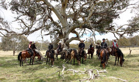 Groep horseriders Royalty-vrije Stock Foto