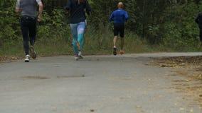 Groep jonge marathonagenten die langs het Park van de de herfststad lopen stock footage