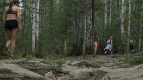 Groep jonge meisjesatleten die langs een steensleep lopen in bos stock videobeelden