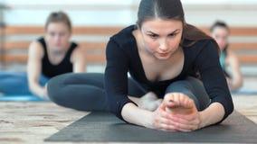 Groep jonge sportieve vrouwen die uitrekkende oefeningen op de vloer doen stock footage