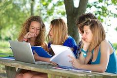 Groep jonge student die openlucht laptop met behulp van royalty-vrije stock fotografie