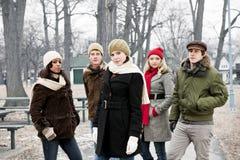 Groep jonge vrienden buiten in de winter royalty-vrije stock fotografie
