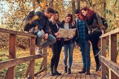 Groep jonge vrienden die in de herfst kleurrijk bos wandelen, bekijkend kaart en planningsstijging stock foto