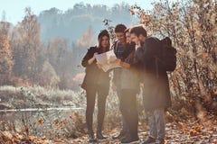 Groep jonge vrienden die in de herfst kleurrijk bos wandelen, bekijkend kaart en planningsstijging royalty-vrije stock afbeelding