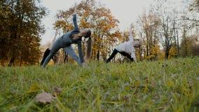 Groep Jonge vrouwen die de oefening van de Yogaactie gezond in het park doen Het concept van de gezondheidslevensstijl stock videobeelden