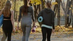 Groep Jonge vrouwen die voor yogaoefeningen voorbereidingen treffen in het park van de de herfststad Het concept van de gezondhei stock video