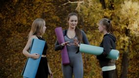 Groep Jonge vrouwen die voor yogaoefeningen voorbereidingen treffen in het park van de de herfststad Het concept van de gezondhei stock footage