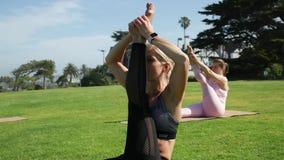 Groep jonge wijfjes die yoga op de kust in de loop van de dag uitoefenen Groen gras stock videobeelden