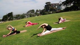 Groep jonge wijfjes die yoga op de kust in de loop van de dag uitoefenen Groen gras stock video