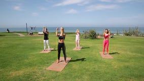 Groep jonge wijfjes die yoga op de kust in de loop van de dag uitoefenen Groen gras stock footage