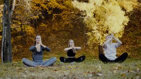 Groep jonge yogavaklieden die yogaoefeningen in park doen De vrouwen mediteren openlucht voor de mooie herfst stock footage