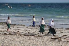 Groep jongeren die langs het strand op zonsondergangachtergrond lopen Studenten en daar ouders die naar huis gaan royalty-vrije stock fotografie