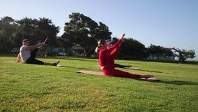 Groep jongeren die yoga op de kust in de loop van de dag uitoefenen Groen gras stock footage