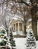 Groep Kerstbomen voor het Fauquier-gerechtsgebouw van de Provincie in Warrenton Virginia Stock Foto's