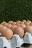 Groep kippeneieren Stock Afbeeldingen