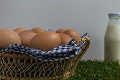 Groep kippeneieren in een mand Stock Afbeelding