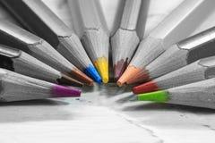 Groep kleurenpotloden in zwart-wit royalty-vrije stock afbeelding