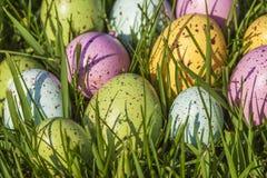 Groep kleurrijke eieren op gras Royalty-vrije Stock Afbeeldingen