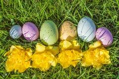 Groep kleurrijke eieren op gras met bloemen Stock Afbeelding