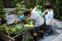 Groep kleuterschooljonge geitjes leren die in openlucht tuinieren stock afbeeldingen