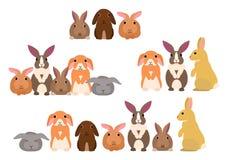 Groep konijnen vector illustratie