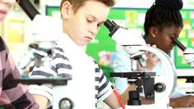 Groep Leerlingen die Microscopen in Wetenschapsklasse gebruiken stock videobeelden