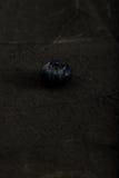 Groep macroclose-up van de bosbessen de donkere foto Royalty-vrije Stock Afbeeldingen