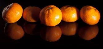 Groep mandarins met bezinning over zwarte achtergrond Royalty-vrije Stock Afbeeldingen