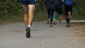 Groep marathonagenten die langs het Park van de de herfststad met gele bladeren lopen stock videobeelden
