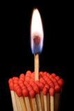 Groep matchsticks stock fotografie