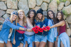 Groep meisjes bij muziekfestival stock foto's