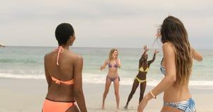 Groep mengen-ras vrouwelijke vrienden die vliegende schijf op het strand 4k spelen stock videobeelden