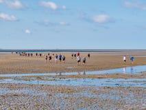 Groep mensen die mudflat op Waddensea at low tide van Friesland aan het eiland Ameland, Nederland wandelen van het Westenfrisian royalty-vrije stock afbeelding