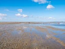 Groep mensen die mudflat op Waddensea at low tide van Friesland aan het eiland Ameland, Nederland wandelen van het Westenfrisian stock afbeeldingen