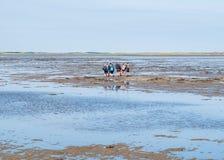 Groep mensen die mudflat op Waddensea at low tide van Friesland aan het eiland Ameland, Nederland wandelen van het Westenfrisian royalty-vrije stock afbeeldingen