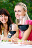 Groep mooie meisjes die wijn drinken Royalty-vrije Stock Afbeeldingen