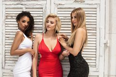 Groep mooie sexy dames in elegante kleding bij zonnige summe royalty-vrije stock foto's