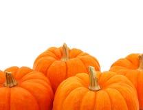 Groep Oranje Pompoenen over Wit Stock Foto