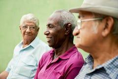 Groep oude zwarte en Kaukasische mensen die in park spreken Stock Afbeeldingen