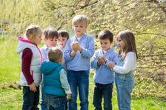 Groep peuterjonge geitjes, vrienden en siblings, die in de pa spelen Royalty-vrije Stock Fotografie