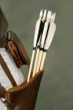 Groep pijlen van een middeleeuwse boog in quiver Royalty-vrije Stock Foto