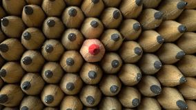 Groep potloden stock videobeelden