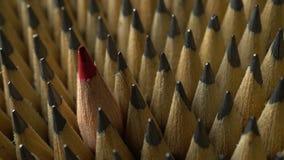 Groep potloden stock footage