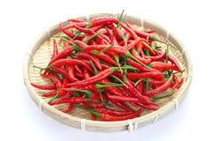 Groep rode Spaanse pepers Royalty-vrije Stock Afbeeldingen