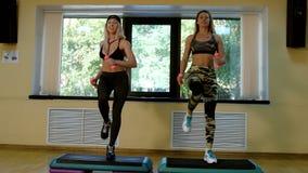 Groep slanke vrouwen die aerobics in de gymnastiek doen stock video