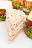 Groep Smakelijke Sandwiches Royalty-vrije Stock Afbeeldingen