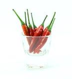 Groep Spaanse peperspeper in glaskop op witte achtergrond Royalty-vrije Stock Foto's