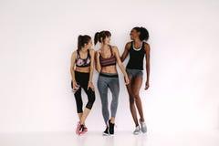 Groep sportieve meisjes die in geschiktheidsstudio spreken stock fotografie