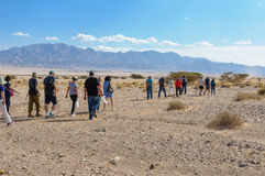 Groep toeristen die in de woestijn wandelen Royalty-vrije Stock Fotografie